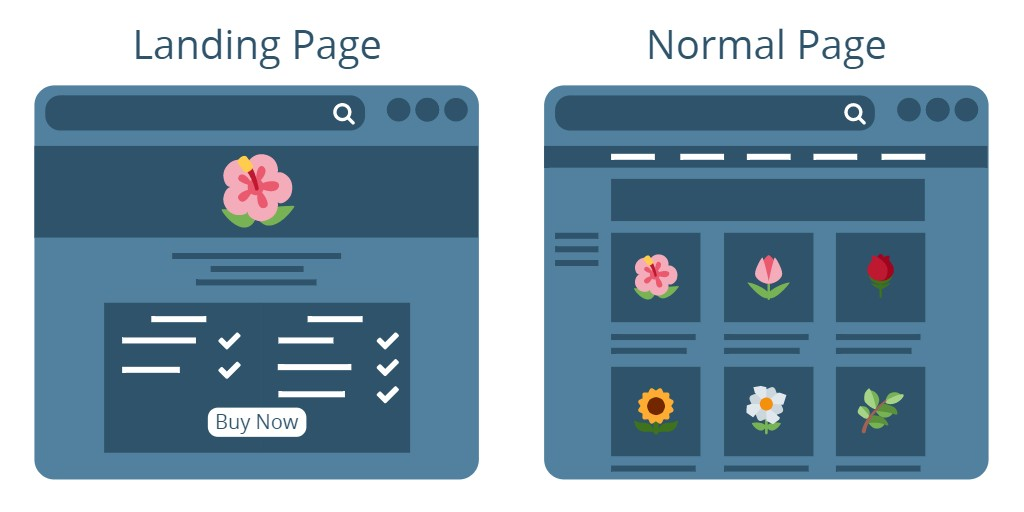 Differences Between Landing Pages And Web Pages - Lander Blog